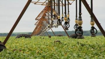 Mato Grosso do Sul aposta no escoamento da supersafra para contornar crise