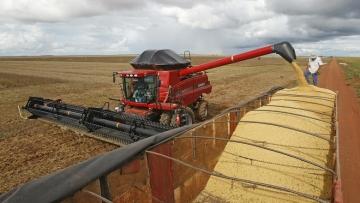 Em março, IBGE prevê safra de grãos 25,1% maior que a de 2016