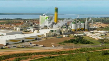 Eldorado Celulose adia para 2020 início de ampliação de fábrica em MS