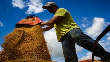 Rotatividade despenca 18,05% no setor primário em Mato Grosso do Sul