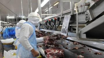 Exportação de industrializados de MS já registra aumento de 25% no ano