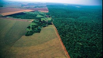 Pequeno produtor tem até maio de 2017 para aderir ao Cadastro Ambiental Rural